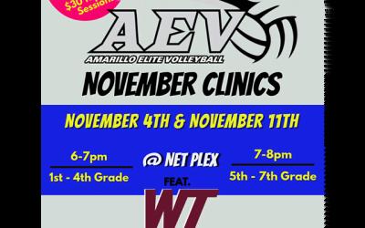 AEV November Clinics 2020